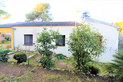 Agradable y acogedora casa a 4 vientos